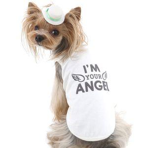 Собачья одежда: виды, ассортимент и ценовой диапазон